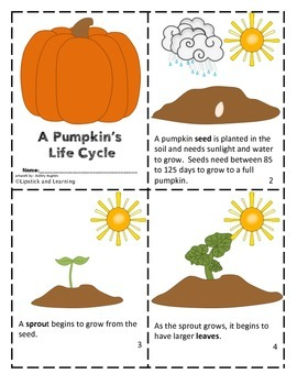 PUMPKIN LIFE CYCLE Mini Book Reader, Activity Cards, Vocab Cards and Foldable