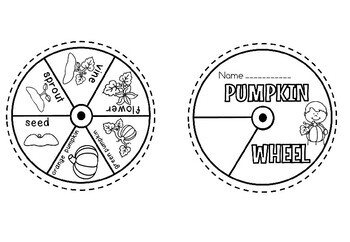 PUMPKIN LIFE CYCLE WHEEL(flash freebie)
