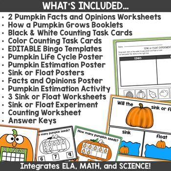 Kindergarten Fall Pumpkins Investigating Activities
