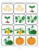 PUMPKINS Theme Unit Activities for Preschool and Pre-K