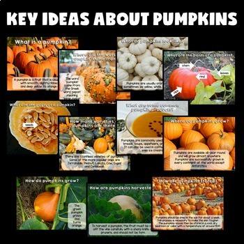 Pumpkins Science Activities (Pumpkins PowerPoint)