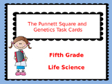 PUNNETT SQUARE & GENETICS TASK CARDS