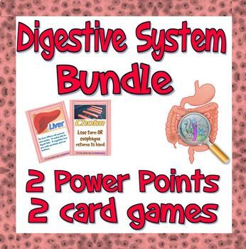 Bundle: Digestion system games and resources