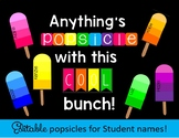 Paint Chip Popsicle Bulletin Board or Door Display