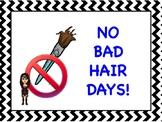 Paintbrush Poster No Bad Hair Days
