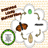 Painted Lady Butterflies {science}