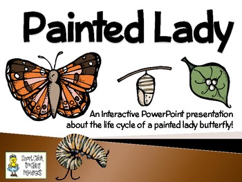 Painted Lady Butterflies ~ An Interactive Presentation of ...