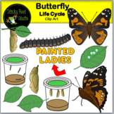 Painted Lady Butterfly Life Cycle Clip Art