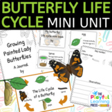 Painted Lady Butterfly Life Cycle Activities & Caterpillar Observation Journal
