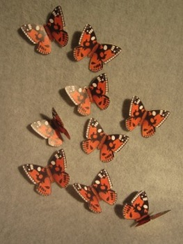Life Size Butterflys Cut Outs. Fun Craft Art