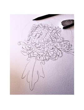 Painting Dahlias - Shading the Petals with Watercolors
