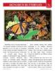 Paired Fiction & Nonfiction Stories: Monarch Butterflies