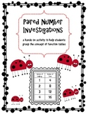 Paired Number Investigations (Function Tables)