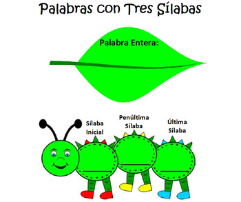 Palabras con tres silabas grafica 3 syllable word Graphic Organizer