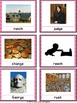 Apraxia & Articulation Cards Palatal-Palatal