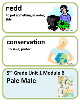 ReadyGen Pale Male Word Wall / Vocabulary Cards / 5th Grade