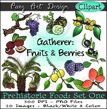 Prehistoric Food CLIPART (Set One): Gatherer- Fruits & Berries {Paez Art Design}