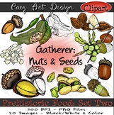 Paleolithic Food (Set Two): Gatherer- Nuts & Seeds {CLIPART}