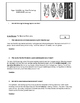 Day 001-002_Paleolithic and Neolithic Ages - Lesson Handout