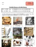 Paleolithic vs Neolithic Entrance/Exit Ticket Social Studies