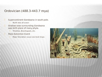 Paleozoic PowerPoint