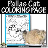 PALLAS CAT Coloring Page