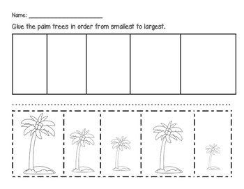 Palm Trees - From Smallest to Largest
