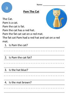 Pam The Cat