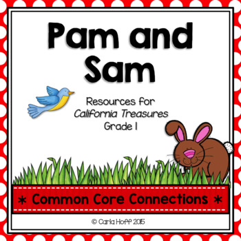 Pam and Sam  - Common Core Connections -Treasures Grade 1