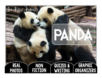 Panda-A Research Project