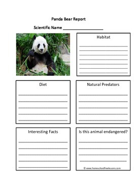 Panda Bear Fill in the Blank One Page Animal Report