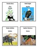 Panda Bear, Panda Bear Bilingual Spanish Game