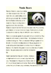 Panda Bear Reading Passages and Questions