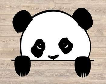 Panda Peeking SVG Peek A Boo bear Kid Peek A Boo SVG 958S