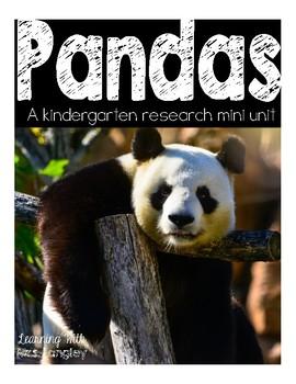 Panda Research Mini Unit for Kindergarten
