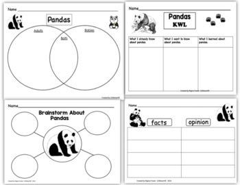 Pandas, Writing Prompts, Graphic Organizers, Diagram