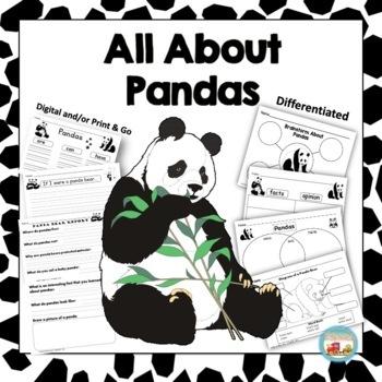 pandas, writing prompts, graphic organizers, diagram by ... panda diagram