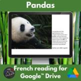 Pandas French reading activity - Google™ Drive version