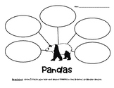 Pandas Nonfiction Graphic Organizer