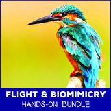 Paper Airplanes and Bird Biomimicry - Elementary Flight Bundle