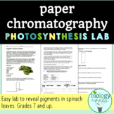 Paper Chromatography Lab- Pigment Powered Plants!