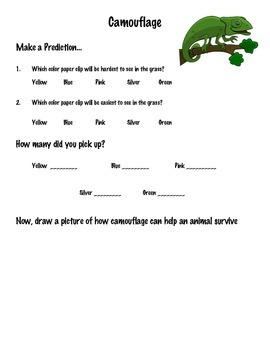 Paper Clip Camouflage Activity
