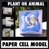Cell Model - Printable Pattern For A 3-D Free-Standing Pap