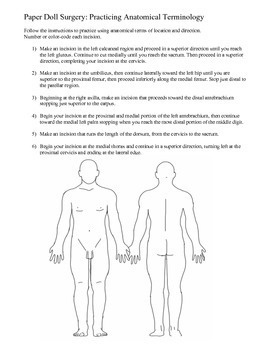 Paper Doll Surgery: Practicing Anatomical Terms of Location and Direction