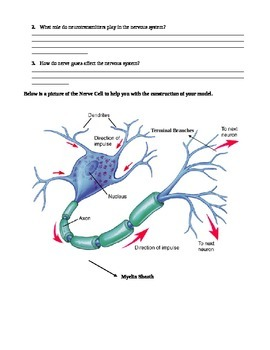 Paper Lab on the Neuron
