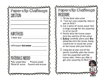 Paperclip Challenge: Sink or Float Activity