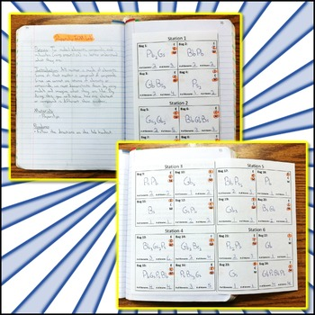 Lab: Paperclip Element, Compound, and Molecule Lab
