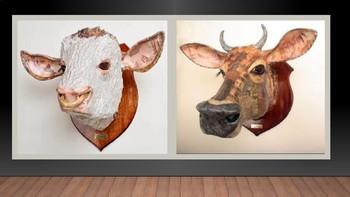 Papier Mache Trophy Animal Heads Slideshow Presentation