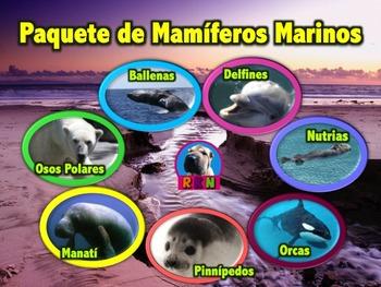 Paquete de Mamíferos Marinos - Presentaciones en PowerPoint