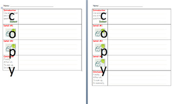 Paragraph Graphic Organizer - Differentiated